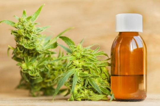 5 Reasons Why CBD Is Gaining Acceptance