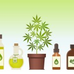 Best CBD Brands For Sale In 2021