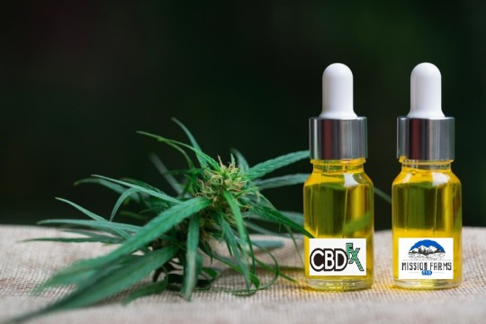 Try These Best CBD Oils for Sleep
