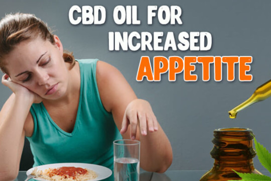 Can CBD Help You Regain Your Lost Appetite?