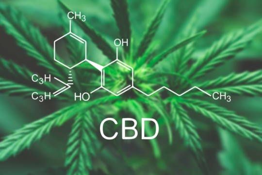 Cannabidiol (CBD) — What We Know and What We Don't