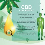Can CBD Oil Help With Anxiety & Depression?