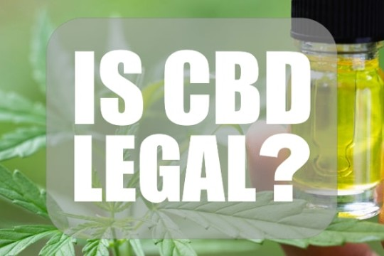 CBD Legal Status in Africa