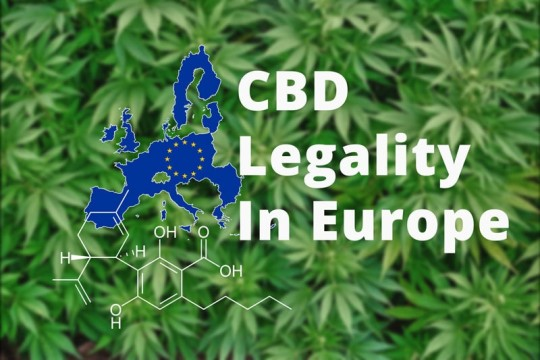 CBD IN EUROPE; IS IT LEGAL?