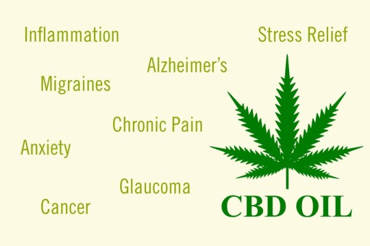 Can CBD Be Used For Chronic And Other Pain Management?