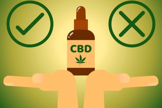 What is the downside of CBD Oil?