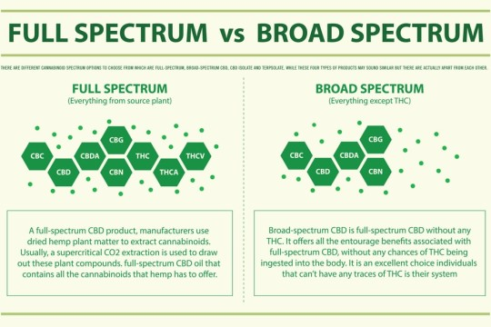 Difference Between Full-Spectrum, Broad-Spectrum and CBD Isolate?